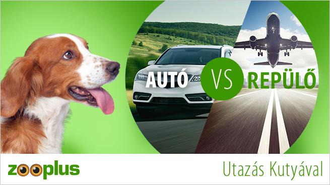 Utazás Kutyával - Autó vagy Repülő