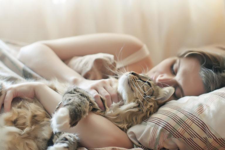Hagyjam, hogy a cicám az ágyban aludjon