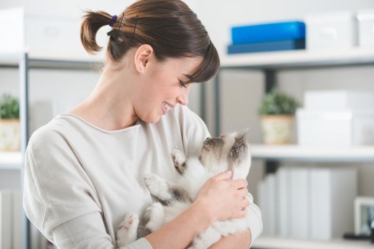 macska szeretet jele