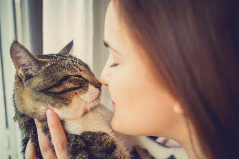 Miért tesznek jót a macskák az egészségünknek