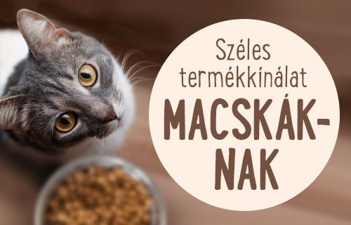Macska eledel es felszereles