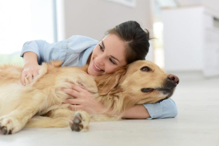 Kutyák emésztési zavarai