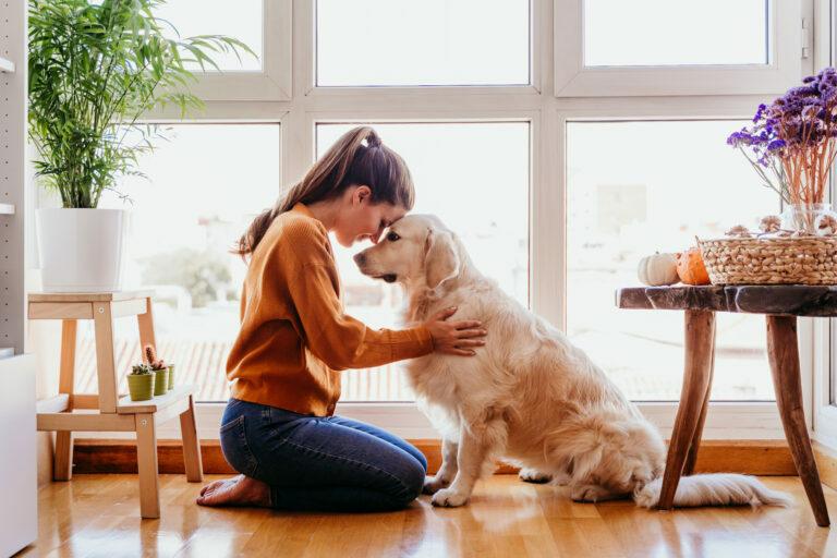 Kutyasétáltatás karanténban