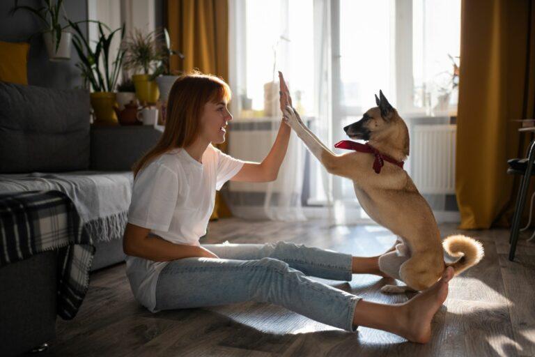 kutyával a covid 19 után
