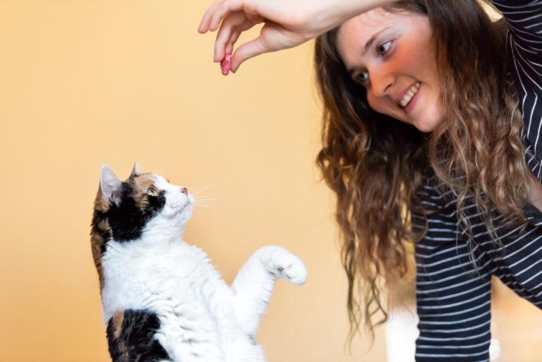 macska trükkök